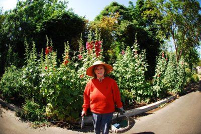 anita sands hernandez, gardener, mother,                       catlady