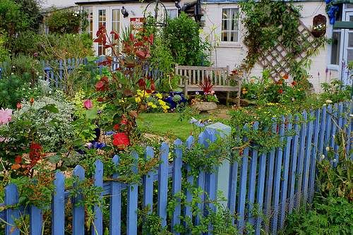 Paint your picket fence, as long as it's not                     bright