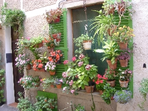 SHUTTERS WITH FLOWER POTS a great                     LOOK on a PATIO WINDOW