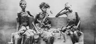 Starvation goes on in 1/3 of the                               planet. You can help by getting FOOD                               STAMPS. WHY GET FOOD STAMPS? To pay you                               for your work in activism.